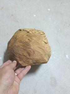 cherry log